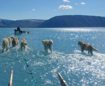 Réchauffement climatique : ce que l'on sait; les infos ; les fakenews